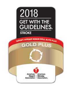 2018 Get with the Guidelines - Stroke - Gold Plus